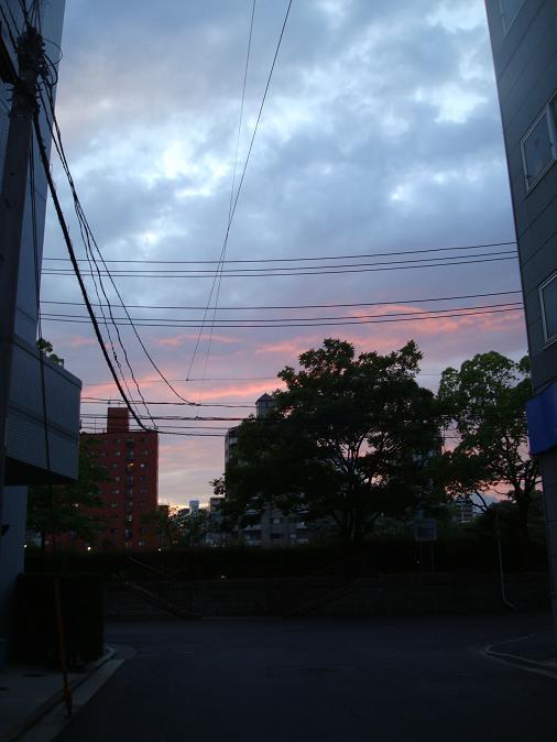 00357.JPG